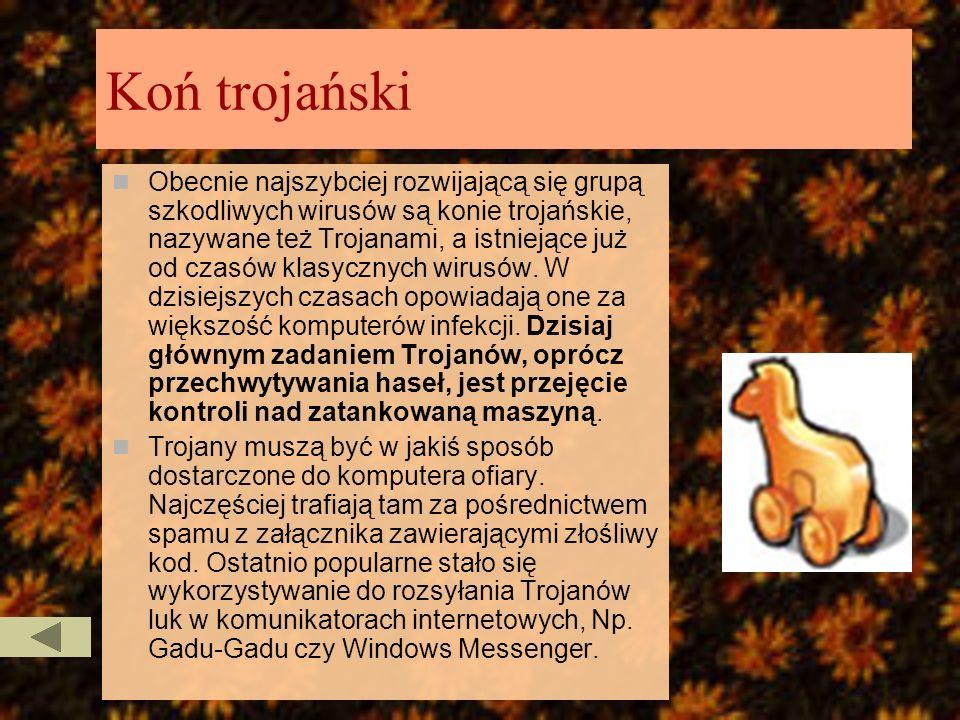 Robak Tradycyjne wirusy zastąpiły tzw. Robaki (ang. Worms). Dzięki lukom w oprogramowaniu – Np. W przeglądarkach internetowych i programach pocztowych