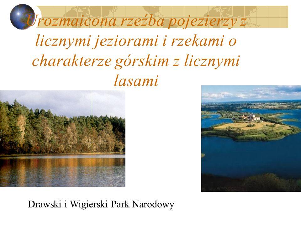 Urozmaicona rzeźba pojezierzy z licznymi jeziorami i rzekami o charakterze górskim z licznymi lasami Drawski i Wigierski Park Narodowy