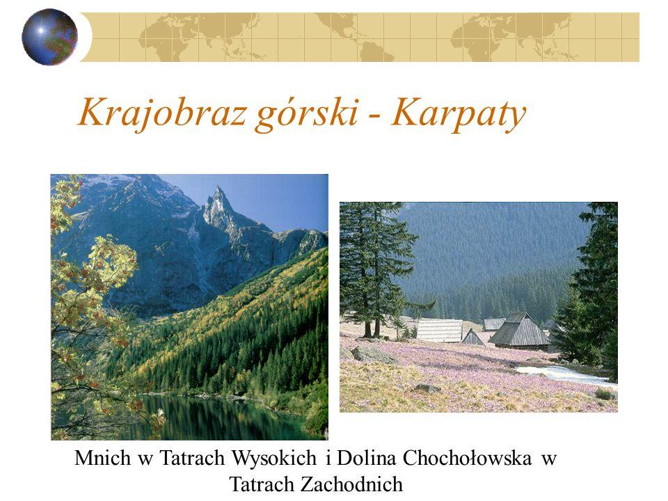 Krajobraz górski - Karpaty Mnich w Tatrach Wysokich i Dolina Chochołowska w Tatrach Zachodnich