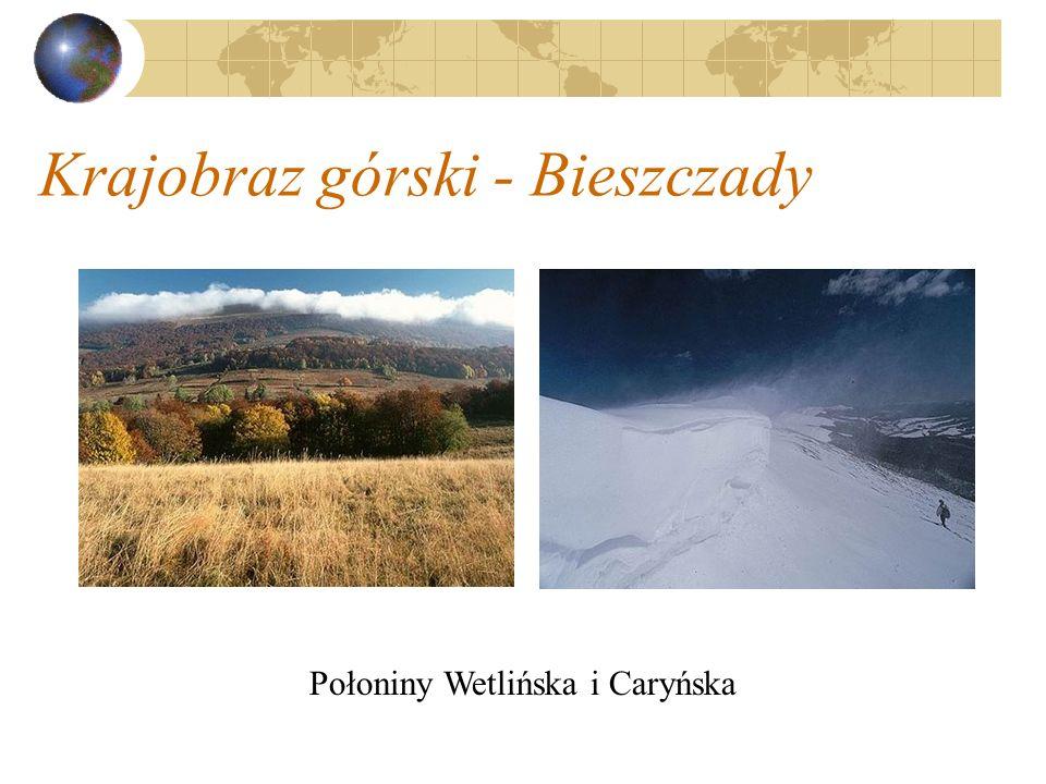Krajobraz górski - Bieszczady Połoniny Wetlińska i Caryńska