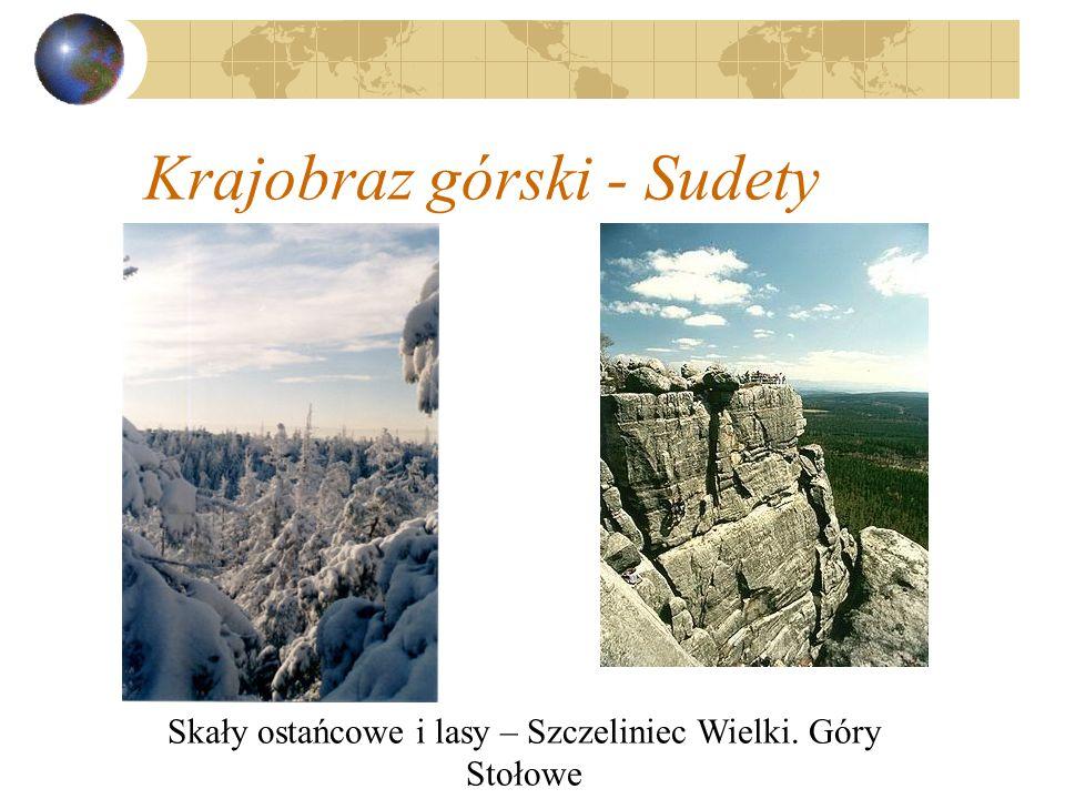 Krajobraz górski - Sudety Skały ostańcowe i lasy – Szczeliniec Wielki. Góry Stołowe