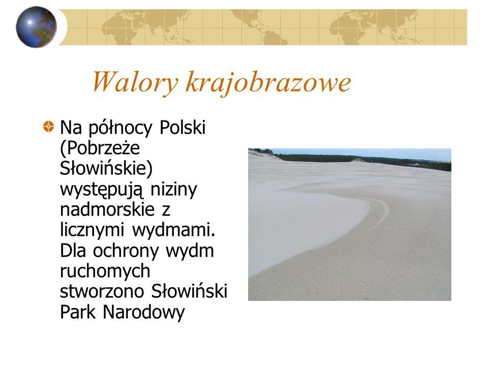 Walory krajobrazowe Na północy Polski (Pobrzeże Słowińskie) występują niziny nadmorskie z licznymi wydmami. Dla ochrony wydm ruchomych stworzono Słowi