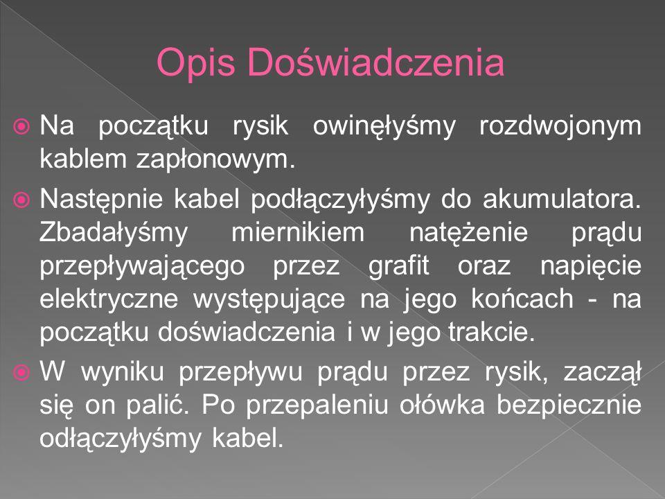 Wykonały: Patrycja Szklarz, Agnieszka Harkabuz Uczennice klasy IIa Gimnazjum nr 1 im.