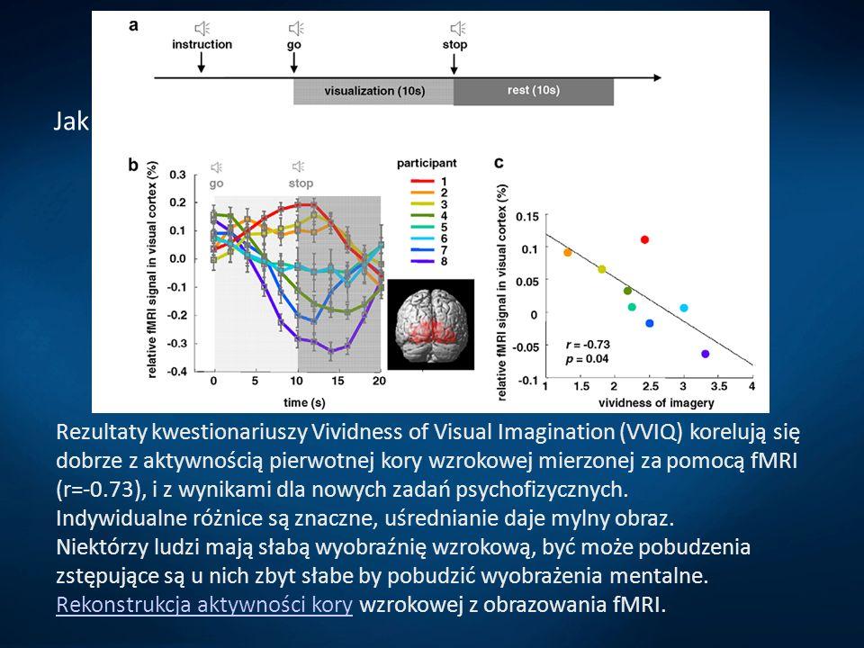 Wyobraźnia i zmysły Jak i gdzie powstają obrazy mentalne? Rezultaty kwestionariuszy Vividness of Visual Imagination (VVIQ) korelują się dobrze z aktyw