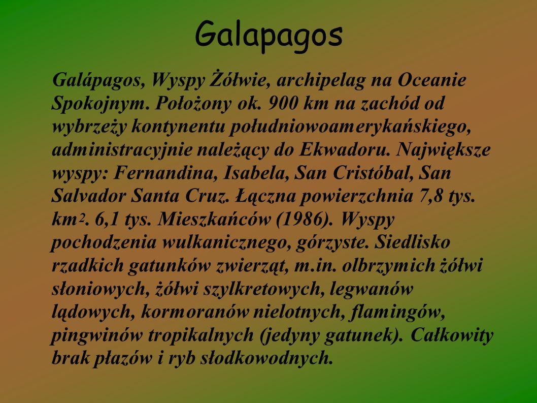 Galapagos Galápagos, Wyspy Żółwie, archipelag na Oceanie Spokojnym. Położony ok. 900 km na zachód od wybrzeży kontynentu południowoamerykańskiego, adm