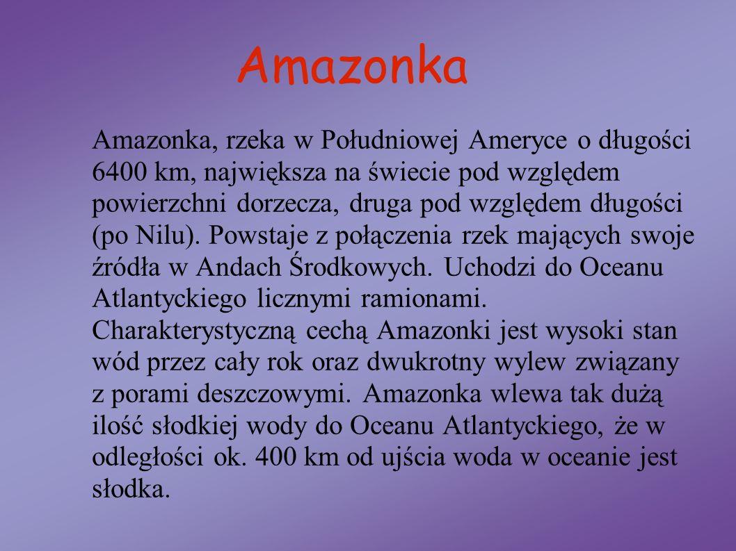 Amazonka Amazonka, rzeka w Południowej Ameryce o długości 6400 km, największa na świecie pod względem powierzchni dorzecza, druga pod względem długośc