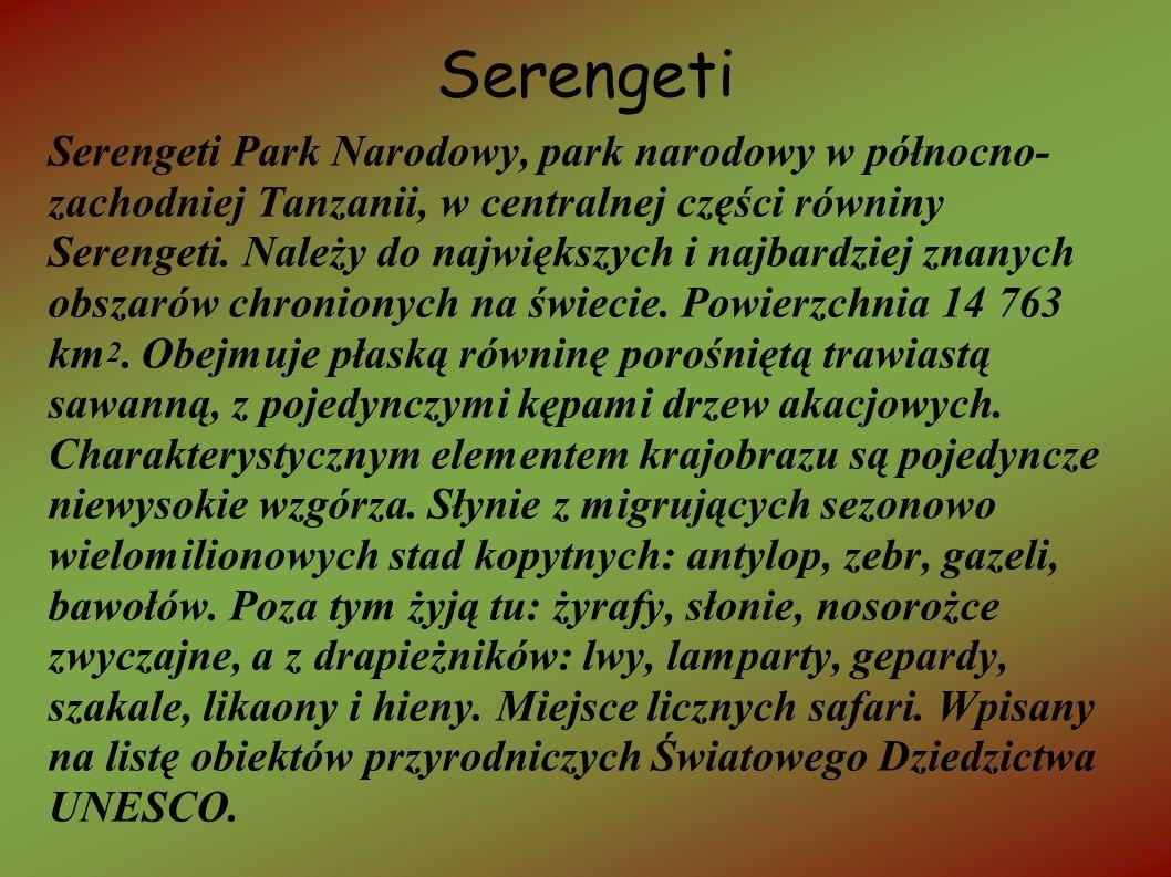 Serengeti Serengeti Park Narodowy, park narodowy w północno- zachodniej Tanzanii, w centralnej części równiny Serengeti. Należy do największych i najb