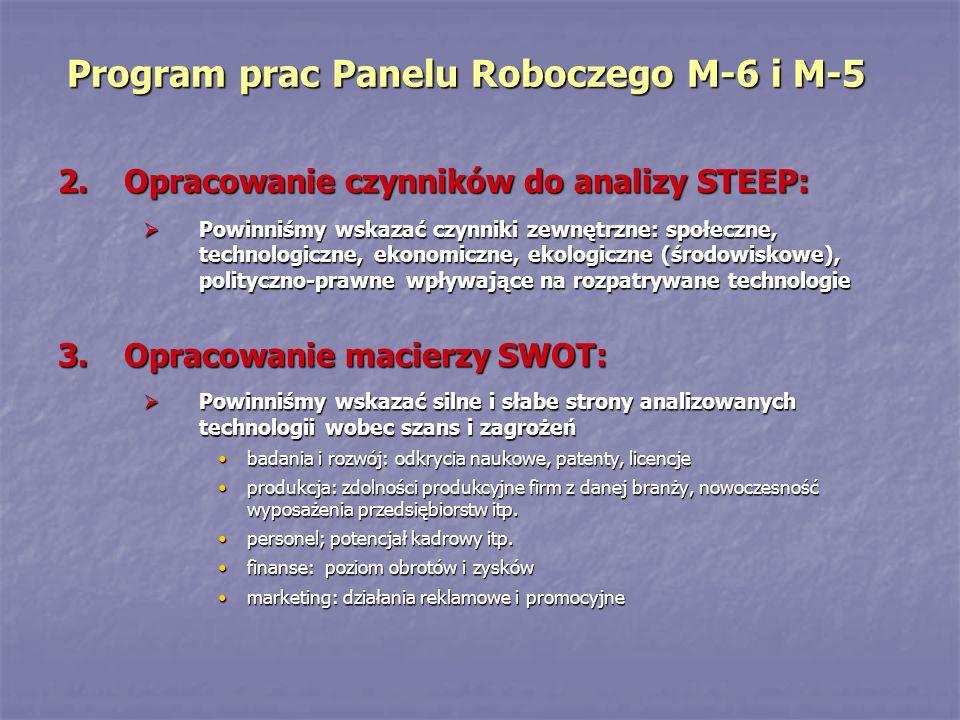 Program prac Panelu Roboczego M-6 i M-5 2.Opracowanie czynników do analizy STEEP: Powinniśmy wskazać czynniki zewnętrzne: społeczne, technologiczne, e
