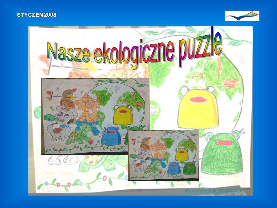 www.comenius-zse.strefa.pl STYCZEŃ 2008