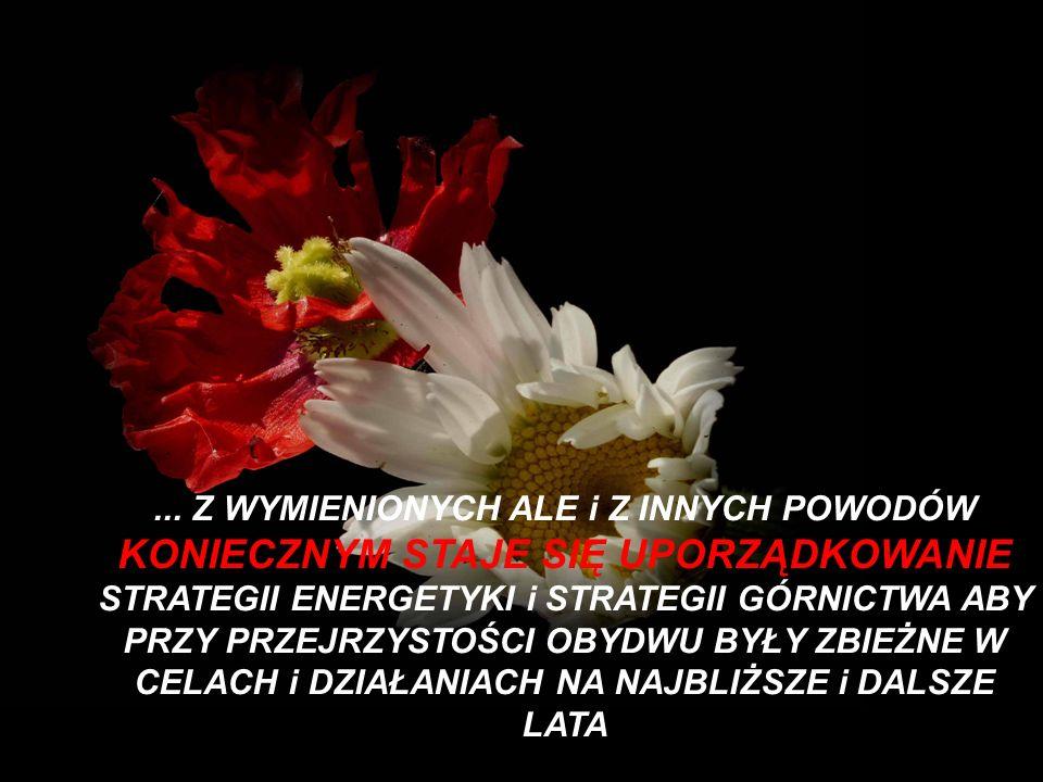 ... Z WYMIENIONYCH ALE i Z INNYCH POWODÓW KONIECZNYM STAJE SIĘ UPORZĄDKOWANIE STRATEGII ENERGETYKI i STRATEGII GÓRNICTWA ABY PRZY PRZEJRZYSTOŚCI OBYDW