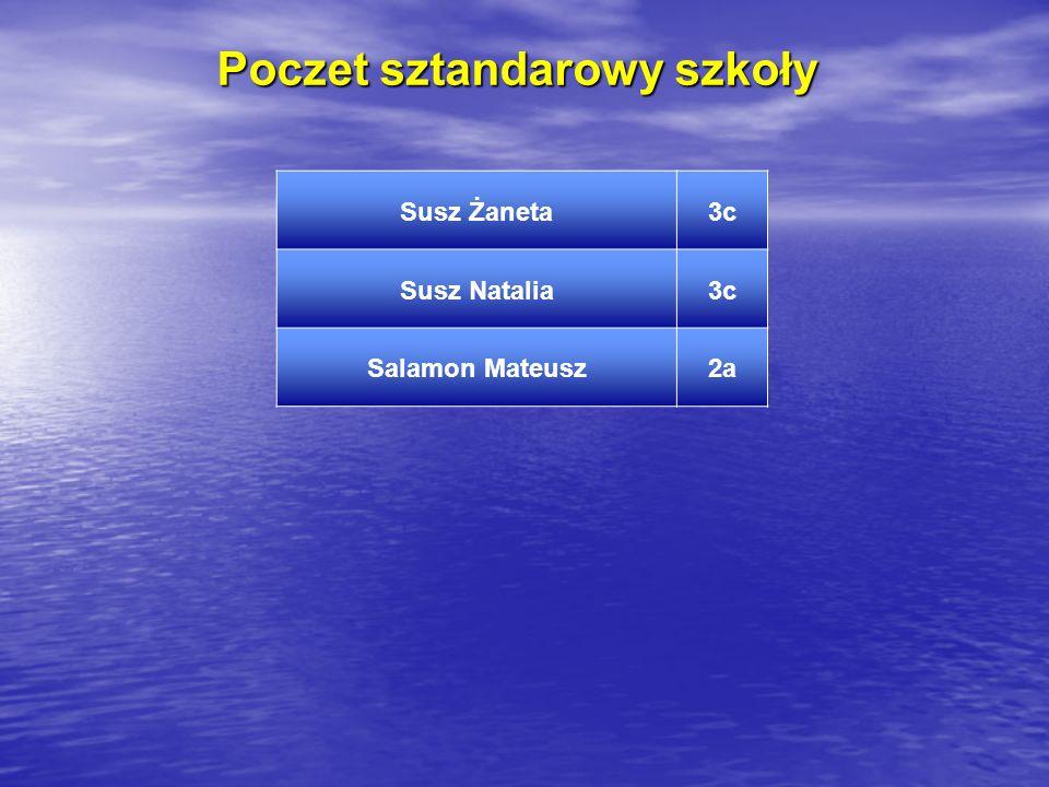 Poczet sztandarowy szkoły Susz Żaneta3c Susz Natalia3c Salamon Mateusz2a
