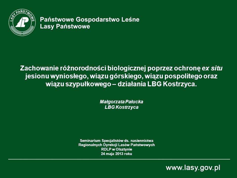 12 Zamieranie jesionu wyniosłego w Wielkiej Brytanii- podejmowane działania Seminarium dla Regionalnych Genetyków, RDLP w Olsztynie, 24 maja 2013 r.