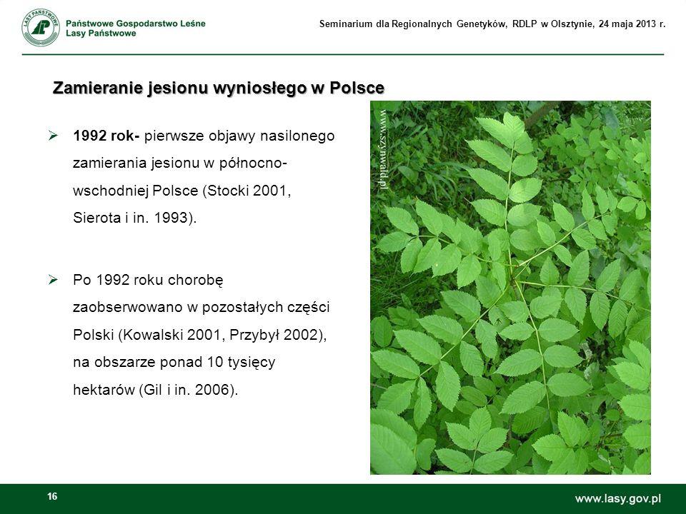 16 Zamieranie jesionu wyniosłego w Polsce 1992 rok- pierwsze objawy nasilonego zamierania jesionu w północno- wschodniej Polsce (Stocki 2001, Sierota