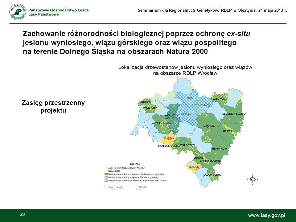 28 Zachowanie różnorodności biologicznej poprzez ochronę ex-situ jesionu wyniosłego, wiązu górskiego oraz wiązu pospolitego na terenie Dolnego Śląska
