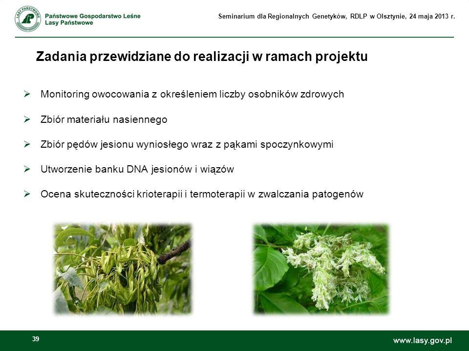 39 Zadania przewidziane do realizacji w ramach projektu Monitoring owocowania z określeniem liczby osobników zdrowych Zbiór materiału nasiennego Zbiór