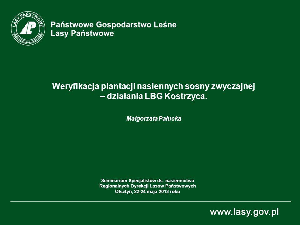 Weryfikacja plantacji nasiennych sosny zwyczajnej – działania LBG Kostrzyca. Małgorzata Pałucka Seminarium Specjalistów ds. nasiennictwa Regionalnych