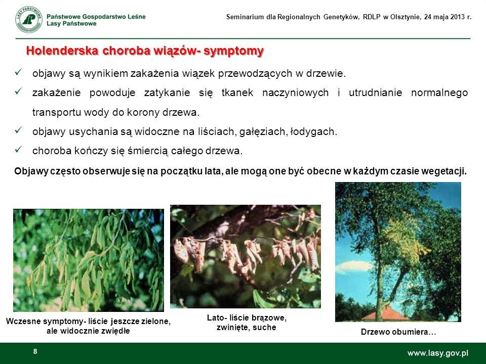 8 objawy są wynikiem zakażenia wiązek przewodzących w drzewie. zakażenie powoduje zatykanie się tkanek naczyniowych i utrudnianie normalnego transport