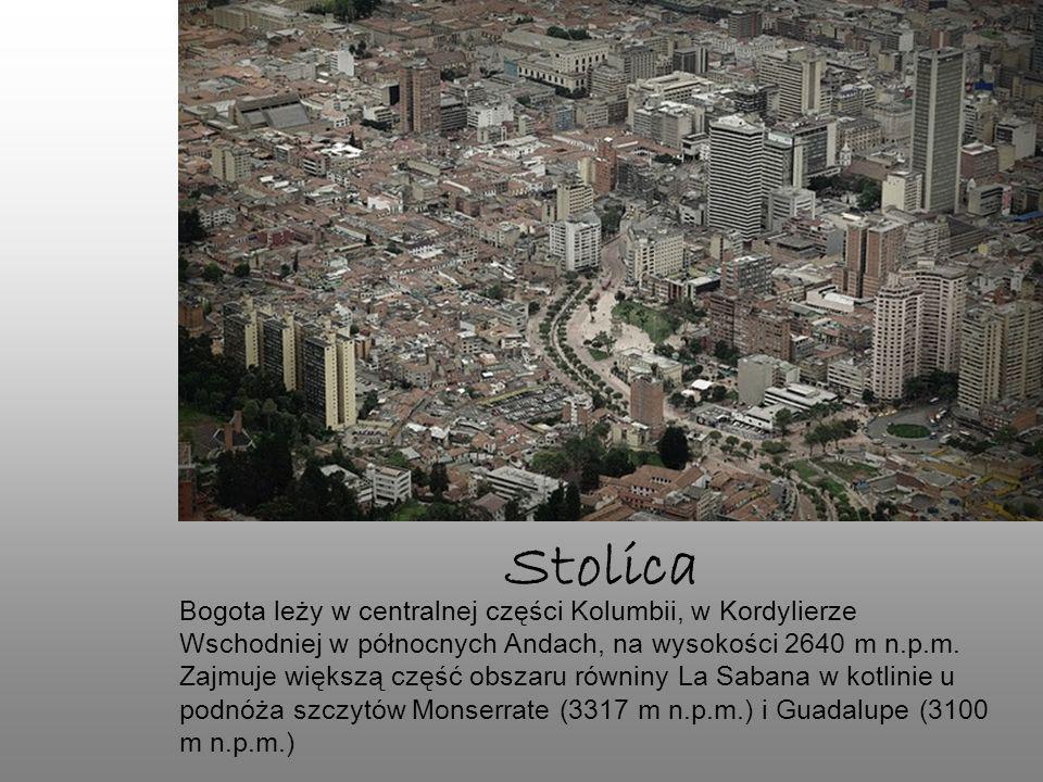 Bogota leży w centralnej części Kolumbii, w Kordylierze Wschodniej w północnych Andach, na wysokości 2640 m n.p.m. Zajmuje większą część obszaru równi