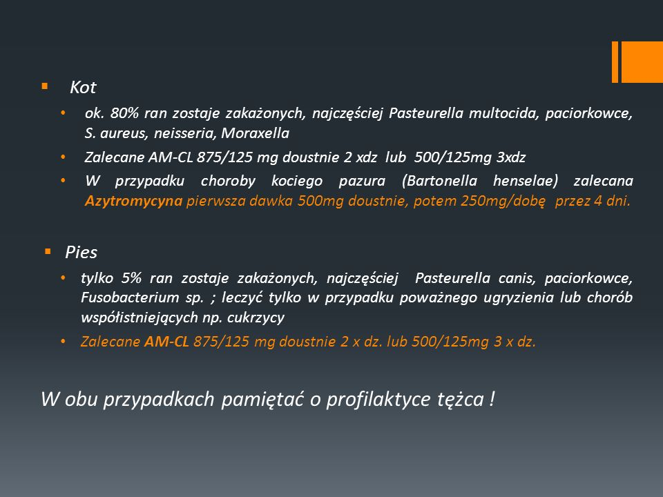 Kot ok. 80% ran zostaje zakażonych, najczęściej Pasteurella multocida, paciorkowce, S. aureus, neisseria, Moraxella Zalecane AM-CL 875/125 mg doustnie