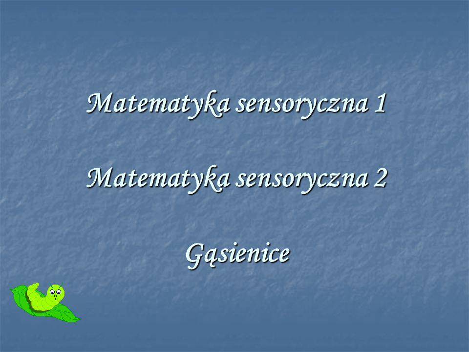 Matematyka sensoryczna 1 Matematyka sensoryczna 2 Gąsienice