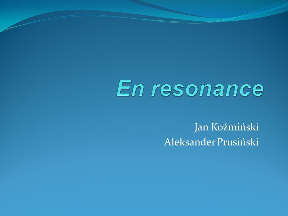 Informacje ogólne Projekt En resonance jest aktywnością realizowaną przez Fundację Pro terra w Poznaniu.