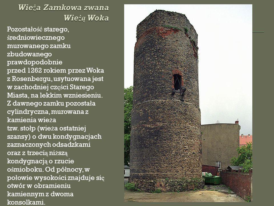 Pozosta ł o ść starego, ś redniowiecznego murowanego zamku zbudowanego prawdopodobnie przed 1262 rokiem przez Woka z Rosenbergu, usytuowana jest w zachodniej cz ęś ci Starego Miasta, na lekkim wzniesieniu.
