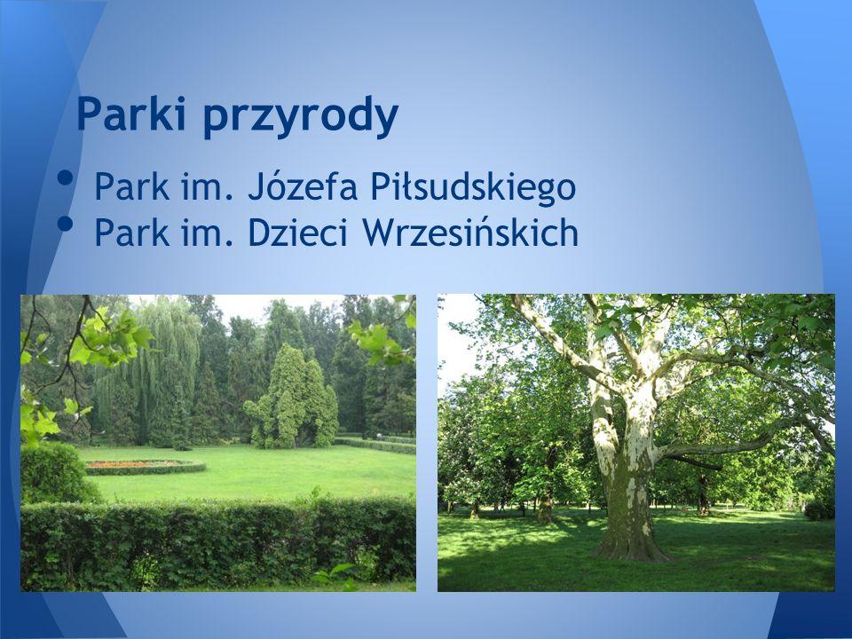 Park im. Józefa Piłsudskiego Park im. Dzieci Wrzesińskich Parki przyrody