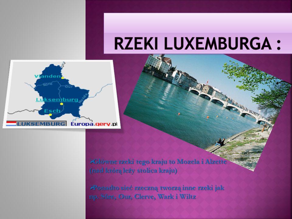 Główne rzeki tego kraju to Mozela i Alzette (nad którą leży stolica kraju) Główne rzeki tego kraju to Mozela i Alzette (nad którą leży stolica kraju)