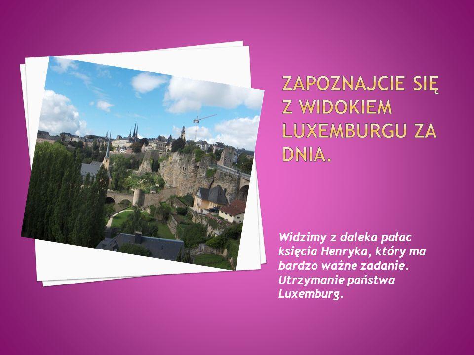 Widzimy z daleka pałac księcia Henryka, który ma bardzo ważne zadanie. Utrzymanie państwa Luxemburg.