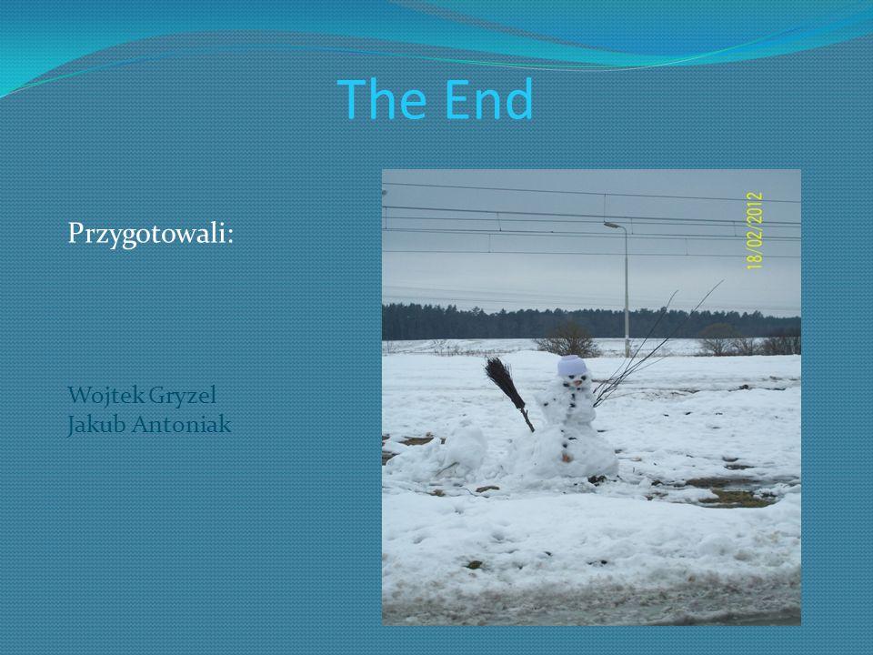 The End Przygotowali: Wojtek Gryzel Jakub Antoniak