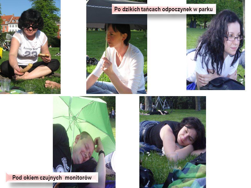 Po dzikich tańcach odpoczynek w parku Pod okiem czujnych monitorów