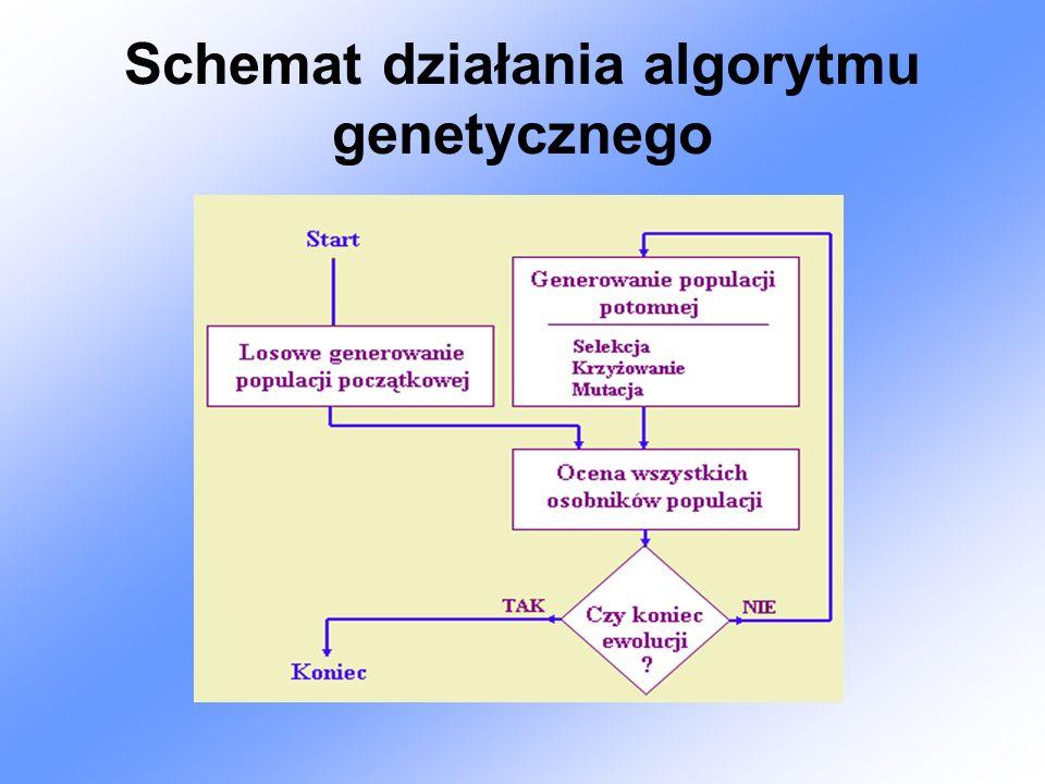 Algorytm działania algorytmu genetycznego procedure AG; begin t : = 0; inicjacja(p[0]); ocena(p[0]); while(not warunek_stopu) do begin T := selekcja(p[t]); W := krzyzowanie(T); ocena(W); t := t + 1; p[t] := W; end; t- numer pokolenia.