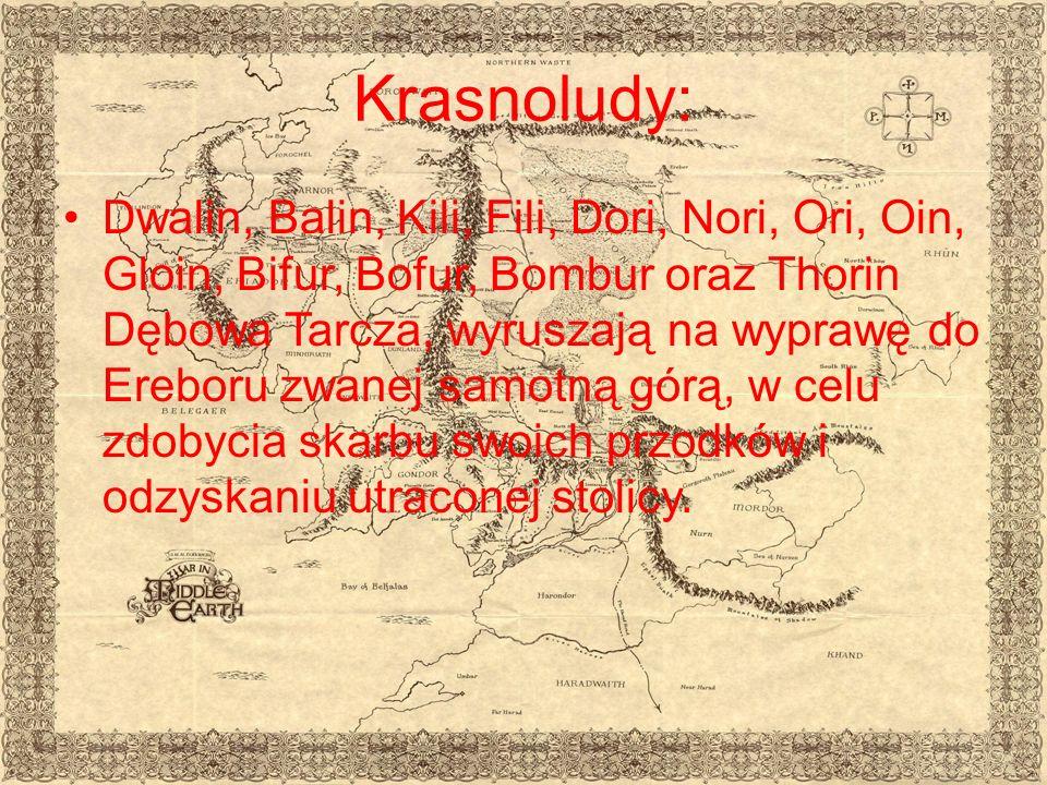 Krasnoludy: Dwalin, Balin, Kili, Fili, Dori, Nori, Ori, Oin, Gloin, Bifur, Bofur, Bombur oraz Thorin Dębowa Tarcza, wyruszają na wyprawę do Ereboru zwanej samotną górą, w celu zdobycia skarbu swoich przodków i odzyskaniu utraconej stolicy.