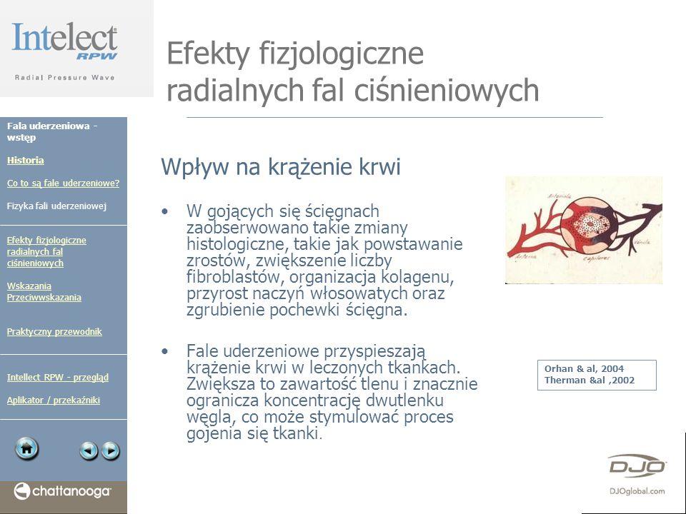Efekty fizjologiczne radialnych fal ciśnieniowych Wpływ na krążenie krwi W gojących się ścięgnach zaobserwowano takie zmiany histologiczne, takie jak