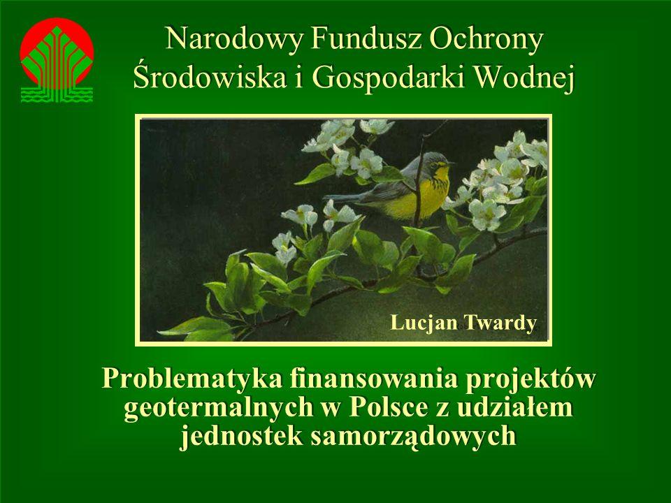 Narodowy Fundusz Ochrony Środowiska i Gospodarki Wodnej Problematyka finansowania projektów geotermalnych w Polsce z udziałem jednostek samorządowych