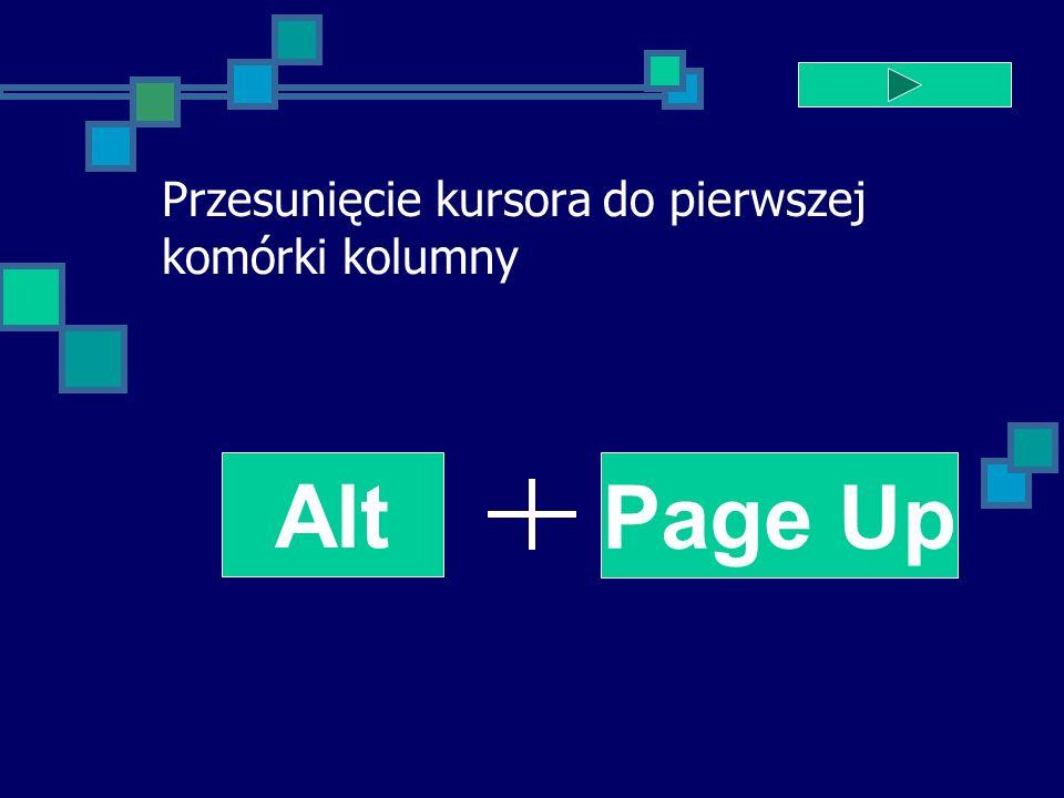 Przesunięcie kursora do pierwszej komórki kolumny Alt Page Up