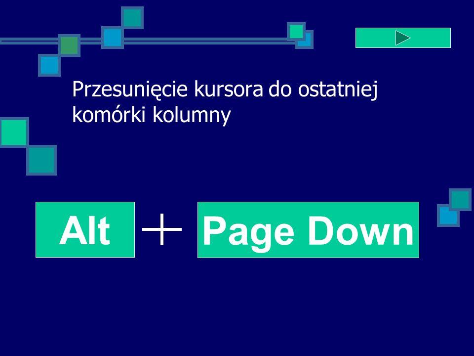 Przesunięcie kursora do ostatniej komórki kolumny Alt Page Down