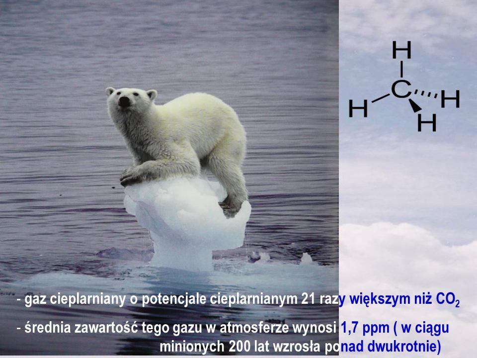 - gaz cieplarniany o potencjale cieplarnianym 21 razy większym niż CO 2 - średnia zawartość tego gazu w atmosferze wynosi 1,7 ppm ( w ciągu minionych