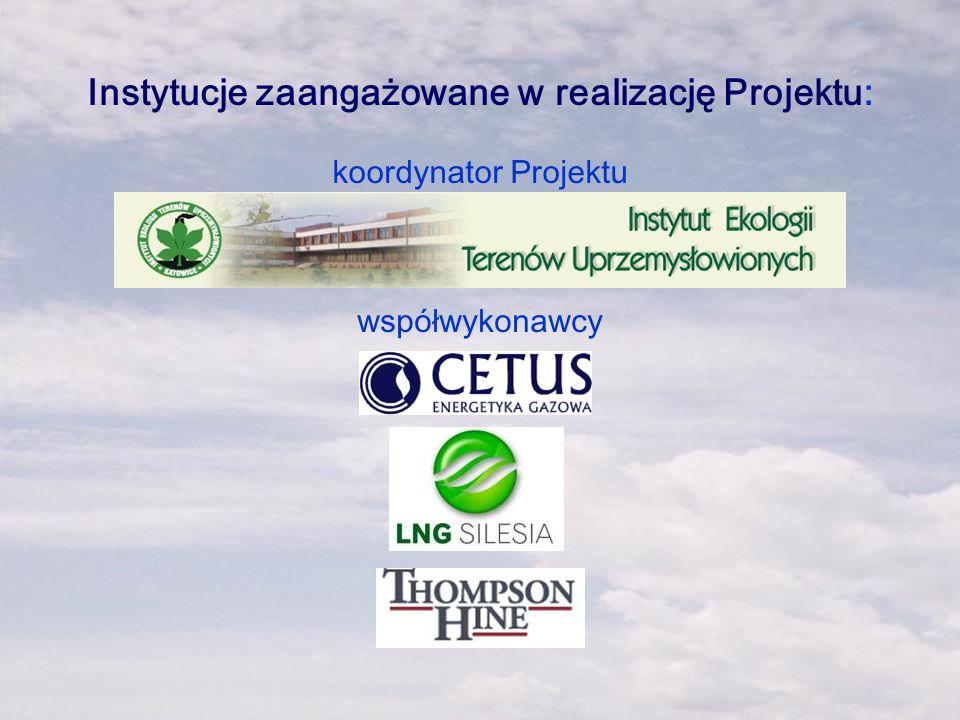 Instytucje zaangażowane w realizację Projektu: koordynator Projektu współwykonawcy