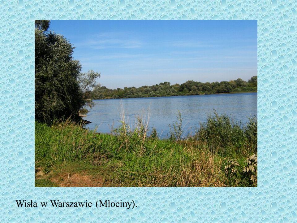 w Polsce jest 90000 hektarów rzek rzeki polskie mają śnieżno-deszczowy ustrój zasilania wysokie stany wody w ciągu roku występują: na wiosnę, w okresi