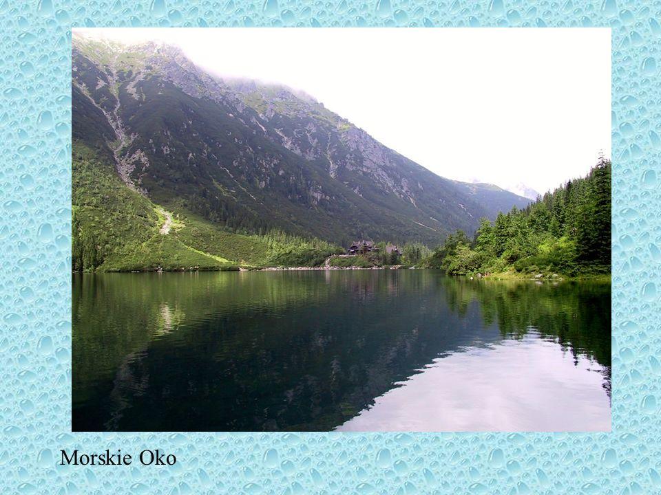 prócz nich w Polsce występują jeziora: powstałe w wyniku działalności lodowców górskich znajdują się w Tatrach (po stronie polskiej 11 o powierzchni p