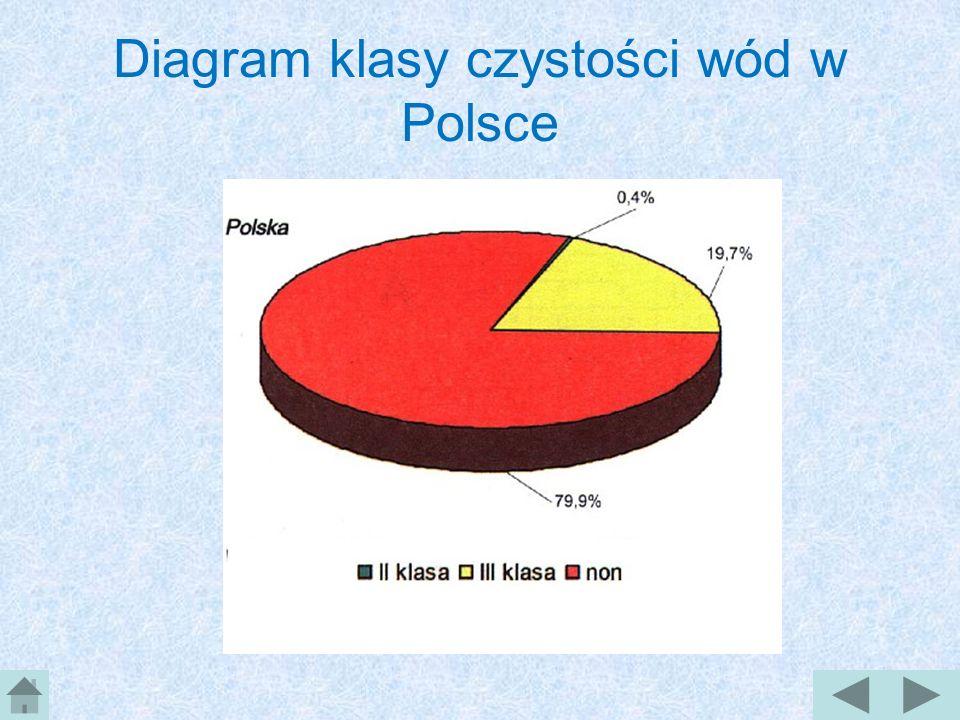 Czystość wód w Polsce Wody, które można zaliczyć: do I klasy czystości, stanowią ok. 3% łącznej długości badanych rzek wody II klasy ok. 15% wody III