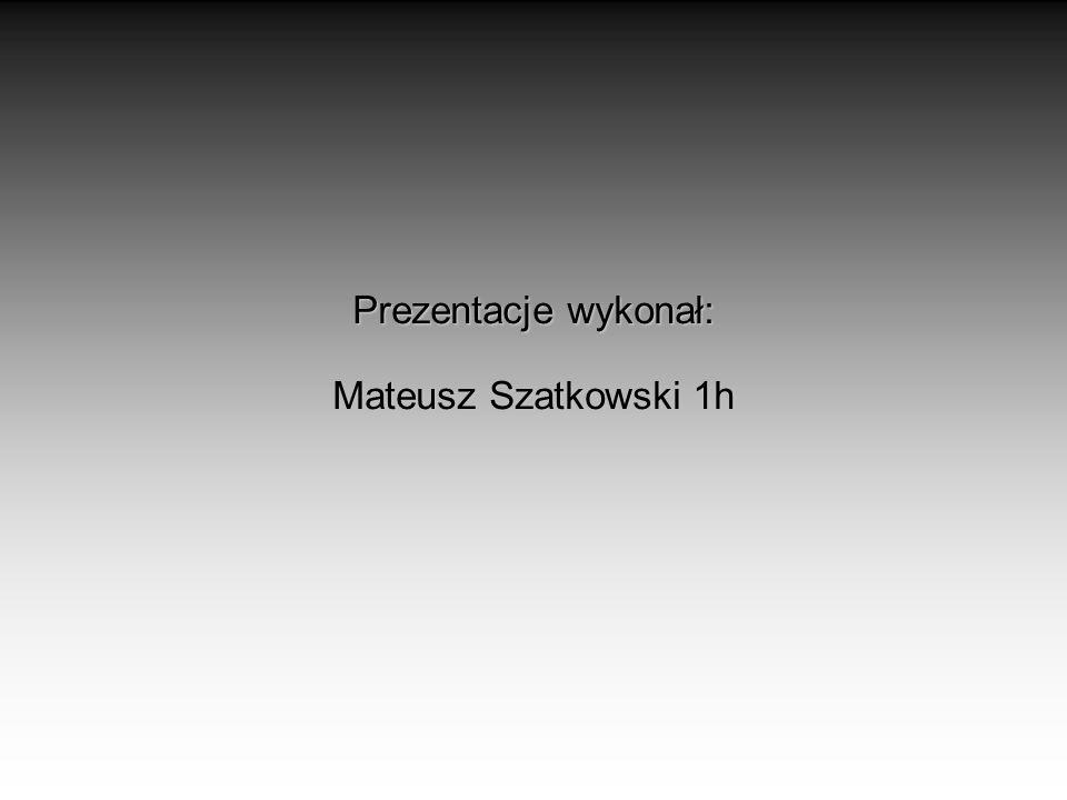 Prezentacje wykonał: Mateusz Szatkowski 1h