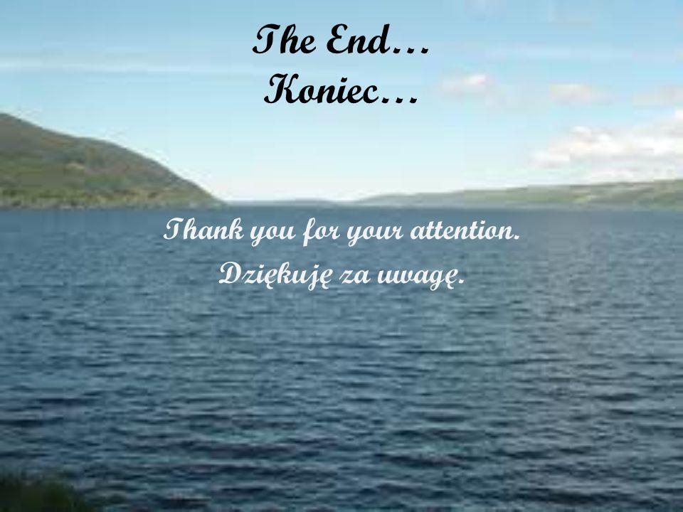 The End… Koniec… Thank you for your attention. Dzi ę kuj ę za uwag ę.