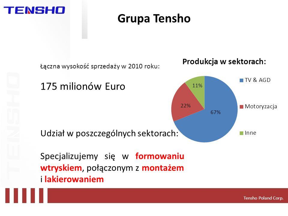 Grupa Tensho Tensho Poland Corp. Łączna wysokość sprzedaży w 2010 roku: 175 milionów Euro Udział w poszczególnych sektorach: Specjalizujemy się w form