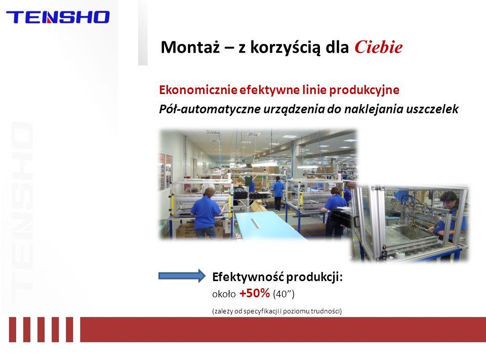 Montaż – z korzyścią dla Ciebie Ekonomicznie efektywne linie produkcyjne Pół-automatyczne urządzenia do naklejania uszczelek Efektywność produkcji: ok