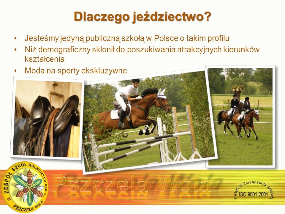 Dlaczego jeździectwo.