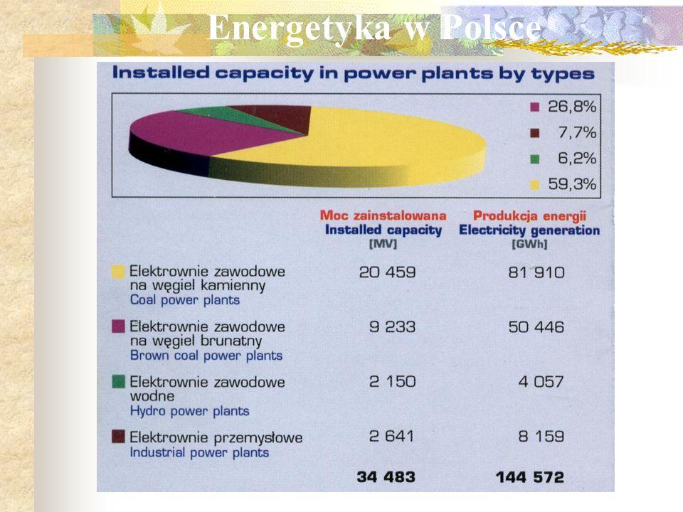 Wstęp Główne cele gospodarki energetycznej Rynek energetyczny Aspekty ekologiczne