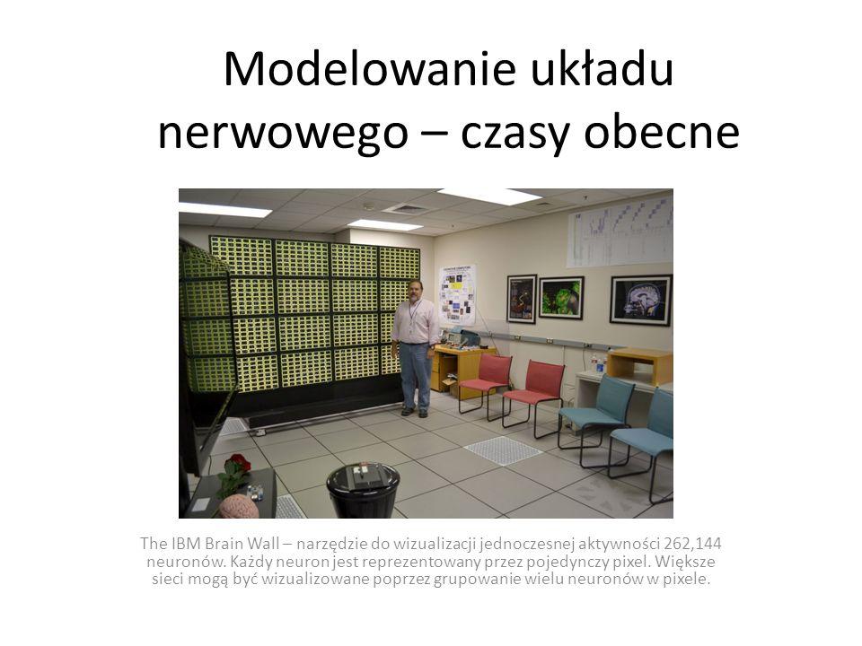 Modelowanie układu nerwowego – czasy obecne The IBM Brain Wall – narzędzie do wizualizacji jednoczesnej aktywności 262,144 neuronów. Każdy neuron jest