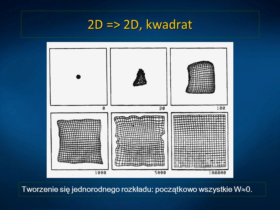 2D => 2D, kwadrat Tworzenie się jednorodnego rozkładu: początkowo wszystkie W 0.